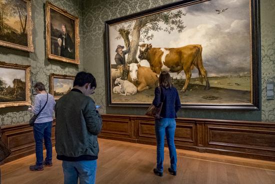 Den-haag_Mauritshuis_potter