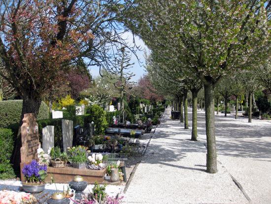 Den-haag_binckhorst_begraafplaats