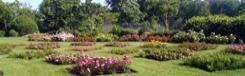 Engels landschapspark in het hart van Den Haag