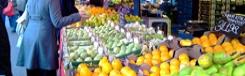Markten in Den Haag