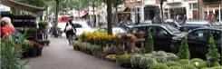 De Fred: de Haagse PC Hooftstraat