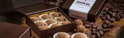 Voor de fijnproever: de Haagse Bonbon-Bal